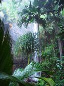 Praslin Wasserfälle