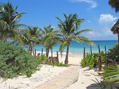 Walk Path To A Tropical White Beach And Blue Sea, Tulum, Mexico