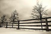 Winter landschap scène