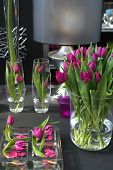 foto of flower arrangement  - tulips in interior in glass as decoration - JPG