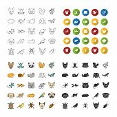 Pets Icons Set. Exotic Animals. Rodents, Birds, Reptiles, Insects, Dogs, Cats. Linear, Flat Design,  poster
