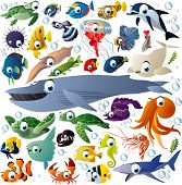 stock photo of shell-fishes  - Extra big vector set of sea animals - JPG