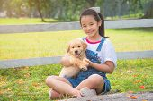 Young Asian Girl Holding A Little Golden Retriever Dog In Park poster