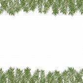Horizontal Christmas Tree Border. Vector Christmas Tree Branches. Realistic Fir-tree Border. Vector  poster