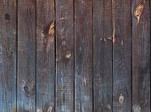 Texture Of A Tree Close-up. The Boards Are In A Row, Painted With Translucent Paint. Over Time, The  poster