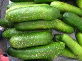 cucumbers in a stack