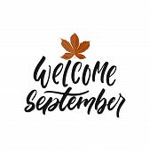 Welcome September - Hand Drawn Seasons Greeting Positive Lettering Phrase Isolated On The White Back poster