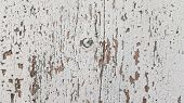 Distressed Wooden Texture With Cracks And Flaking Paint. White Painted Cracked Grunge Texture With N poster