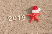 Starfish in Santa Claus hat and seashells on a summer beach. Merry Christmas. poster