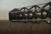 Grain Harvester Bar. Time Of Harvest. Flying Dust From Combine Harvesters poster