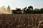 The Yellow Harvester Harvested The Grain. Time Of Harvest. Focus On Grain poster