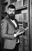 Mature Man With Confident Face And Long Beard. Confidence, Success, Education, Research, Literature  poster