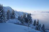 Blauwe Snow Scene