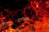 Blaze With Sparks