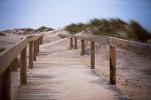 Wooden Footpath Through Dunes At The Ocean Beach