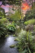 stock photo of arch foot  - Stream Flowing Under the Wooden Bridge Arches with Ferns Hostas and Bog Plants at Crystal Springs Rhododendron Garden at Sunset