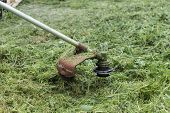foto of grass-cutter  - Lawn mower that cleaning the green grass - JPG