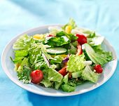 garden salad with fresh vegetables on blue table cloth