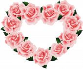 Isolated Pink Rose Heart