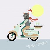 image of scooter  - Fashionable Hipster cat on a vintage scooter  - JPG