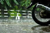 stock photo of tree lined street  - Wheel motorcycle on the road in the tropic rain - JPG