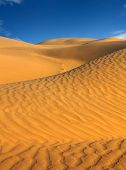 landsape in Tar desert India