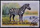stamp printed in Kingdom of Burundi shows an African animal - Zebra
