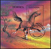 TANZANIA - CIRCA 1993: A stamp printed in Tanzania showing horse circa 1993