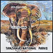 stamp printed in Tanzania dedicated to lake manyara national park shows elephant