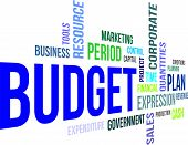 word cloud - budget