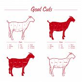 image of flank steak  - graphic goat meat cuts scheme on board - JPG