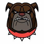 Angry Bulldog