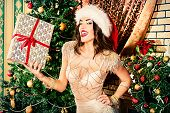 Attractive young woman in sexual lingerie posing in Christmas decorations.