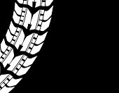 Special Detailed Tire Prints, Vector Design, Eps10