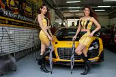 SEPANG, MALAYSIA - MAY 11, 2014: The B-Quik Racing Team grid girls pose with the team car, an Audi R