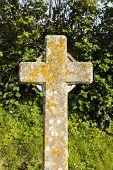 A cross gravestone