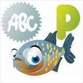 stock photo of piranha  - P is for Piranha - JPG