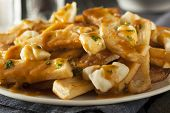 Unhealthy Delicious Poutine With French Fries