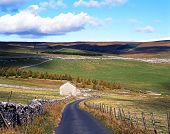 Country road through farmland, Yorkshire Dales.