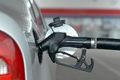 foto of gasoline station  - Putting gasoline in vehicle  - JPG