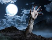 stock photo of corpses  - Zombie hand coming out of his grave - JPG