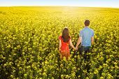 Couple in love in field