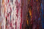 paint brush strokes on canvas texture.