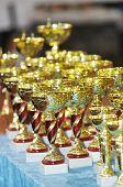 Winners Cups