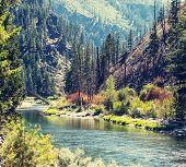 Beautiful mountain river