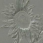 Sunflower Metal Relief Generated Texture