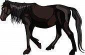 Dark Horse Walks Pensively.eps
