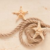 starfish and rope on old paper background