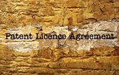 Patient License Agreement