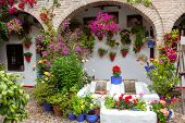 Flowers Decoration of Vintage Courtyard, typical house in Cordoba - Spain, European - 10 of May, 2013